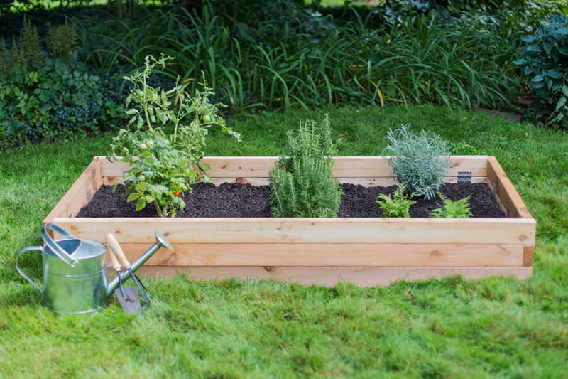 Charmant Raised Garden Beds Vs. Elevated Garden Planters