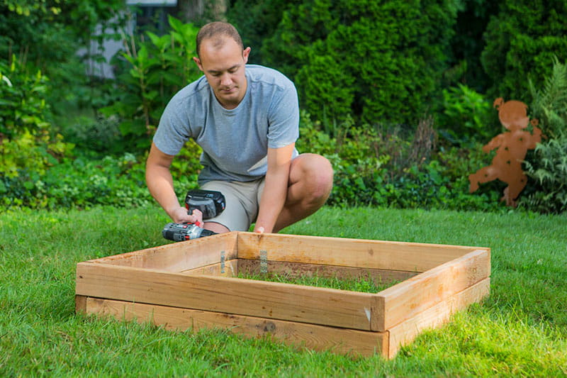 Raised Garden Beds Vs Elevated Garden Planters Outdoor Essentials