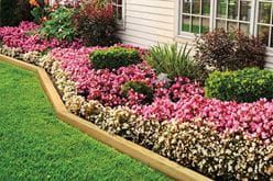 outdoor essentials landscape timbers as garden border