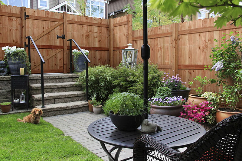 outdoor essentials cedar tone privacy wood fence panel around courtyard